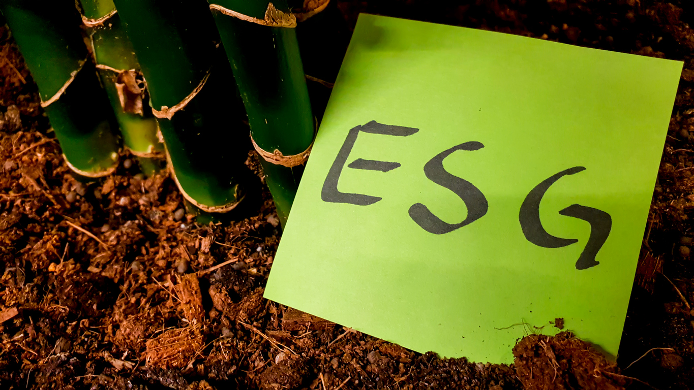 Featured Image for Service Provider Selection in the ESG Era
